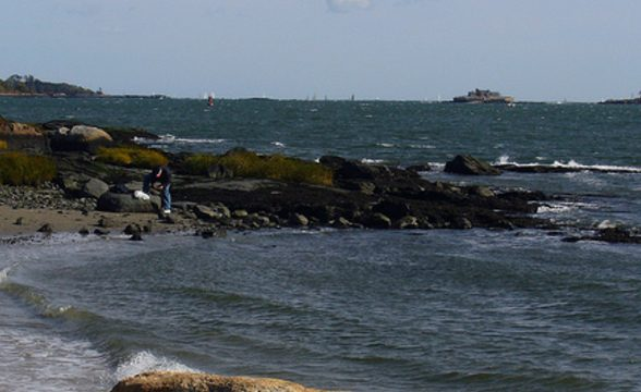 Pelham Bay, The Bronx