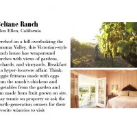 Best Vineyard Hotels GRAPE EXPECTATIONS