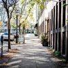 Brookline Village