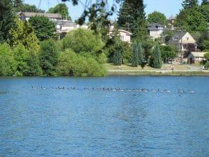 Green Lake,