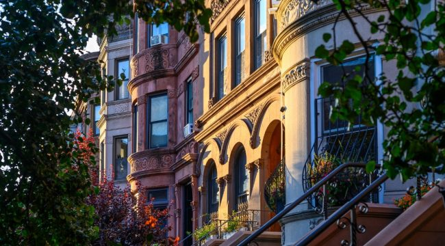 Prospect Heights: Growth, Diversity and Development
