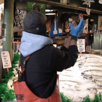 Family Fun in Seattle on a Budget