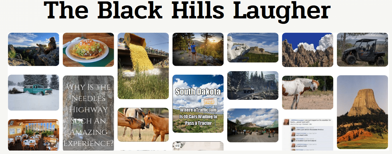 The Black Hills Laugher
