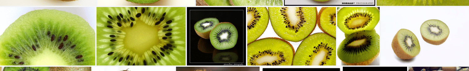 kiwi new zealand fruit