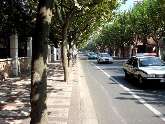 Columbia_Road_(Panyu-Lu-Huai_Hai_Lu)
