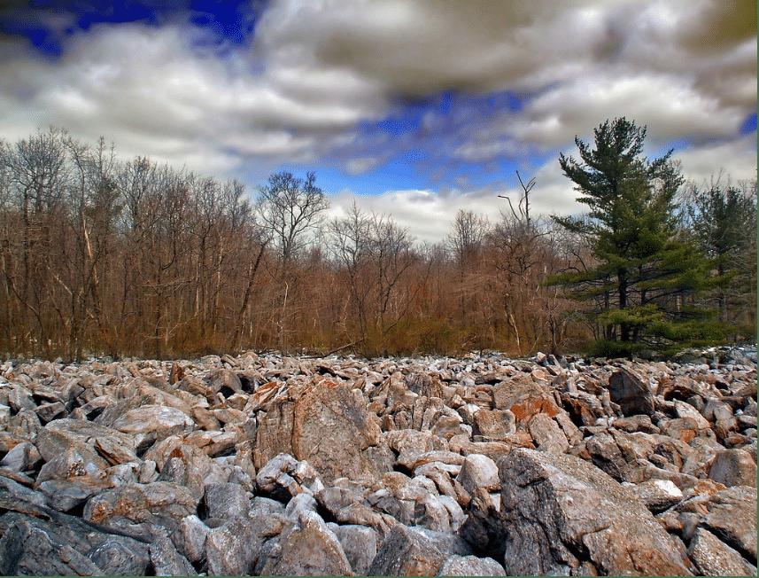 Similar field nearby Coarse
