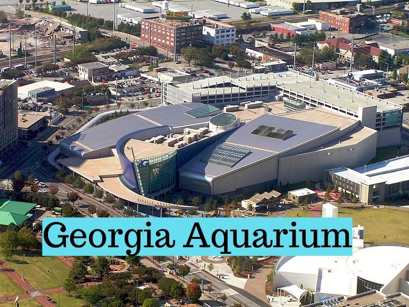 Georgia-aquarium(1)