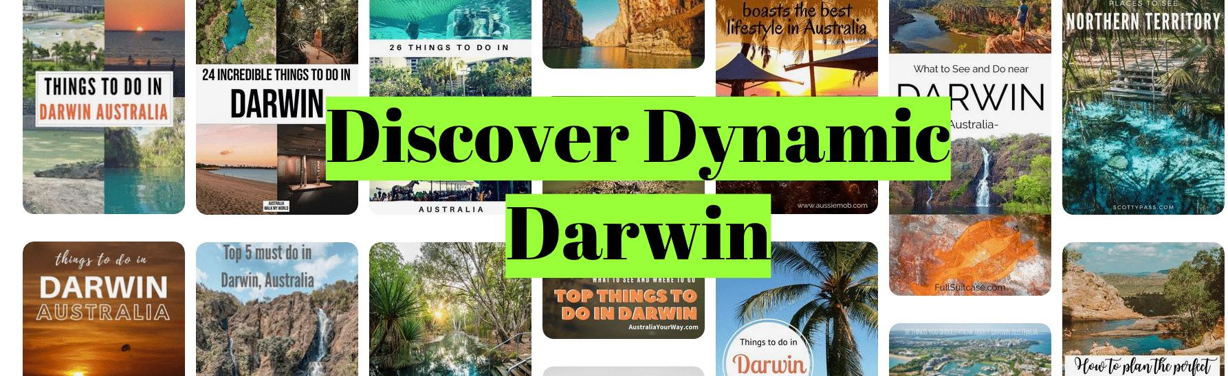 Discover Dynamic Darwin